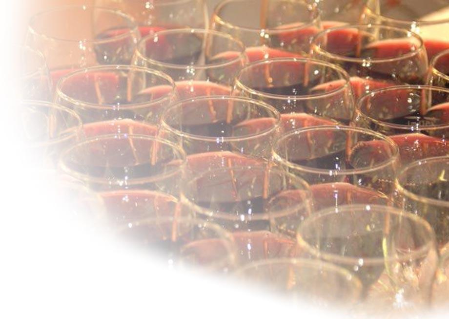 Hoe hou je een wijnproeverij en welke wijn kies je bij een proeverij met wijn