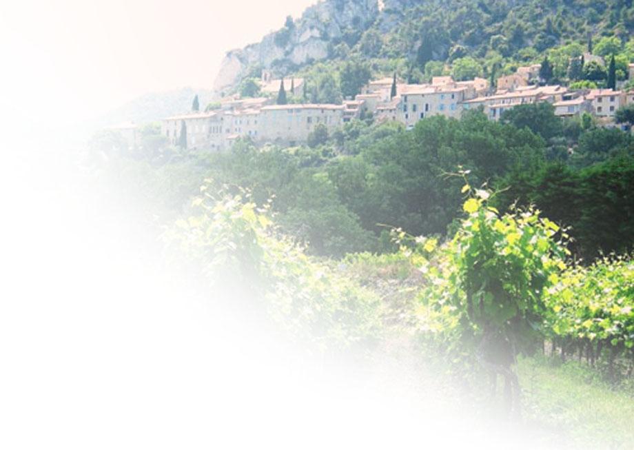 Côtes du Rhône, de prachtige wijnen
