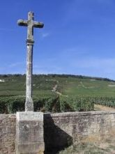 Bourgogne Romanee Conti