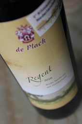 Wijngaard de Plack Regent 2010