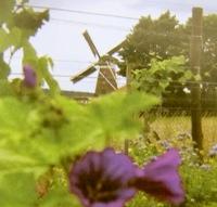 wijngoed montferland in de achterhoek 4