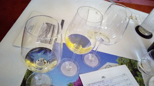Alvi's Drift, van bulkwijn naar kwaliteitswijn tasting wine