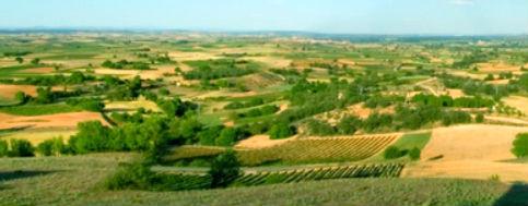 wijnen van Ribera del Duero - uitzicht over de hoogvlakte met wijngaarden