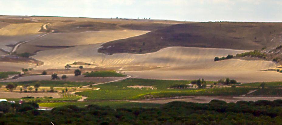 wijngebied Ribera del Duero - uitzicht over de hoogvlakte