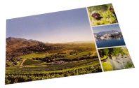 Nieuwe classificatie voor wijnen uit Zuid-Afrika