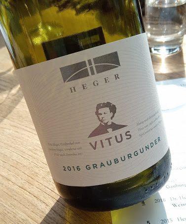 Weingut Dr. Heger in Ihringen vitus grauburgunder