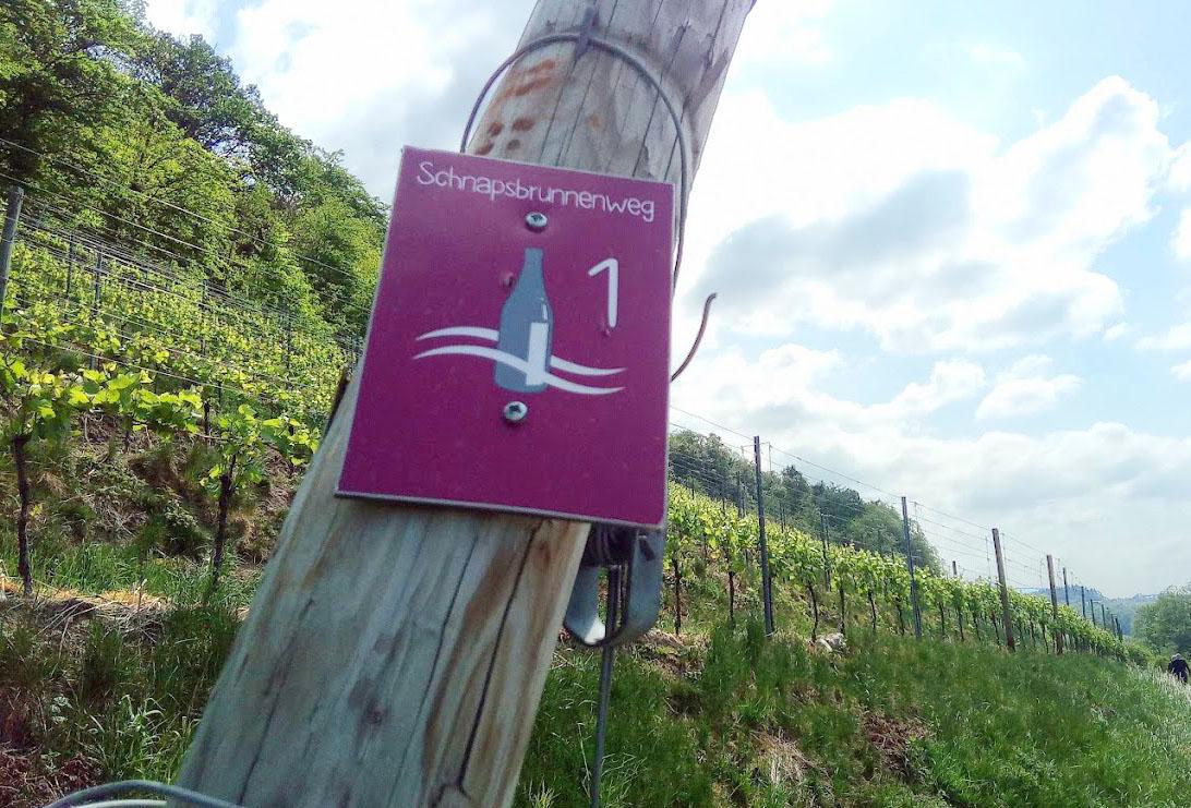 Wijn uit Baden schnapsbrunnenweg