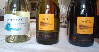 Wijn van wijnhuis Montgras een selectie van wijnen