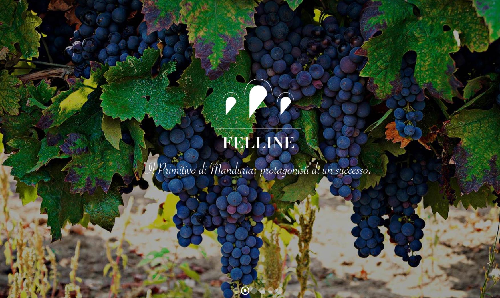 Primitivo is de druif uit Zuid-Italië felline