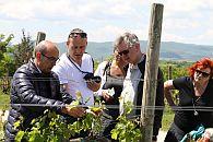 wine & food reis