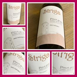 Striga Pinot Grigio 2018; een frivole fruitige wijn