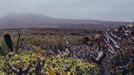 Lanzarote biedt veel mooie wijnen