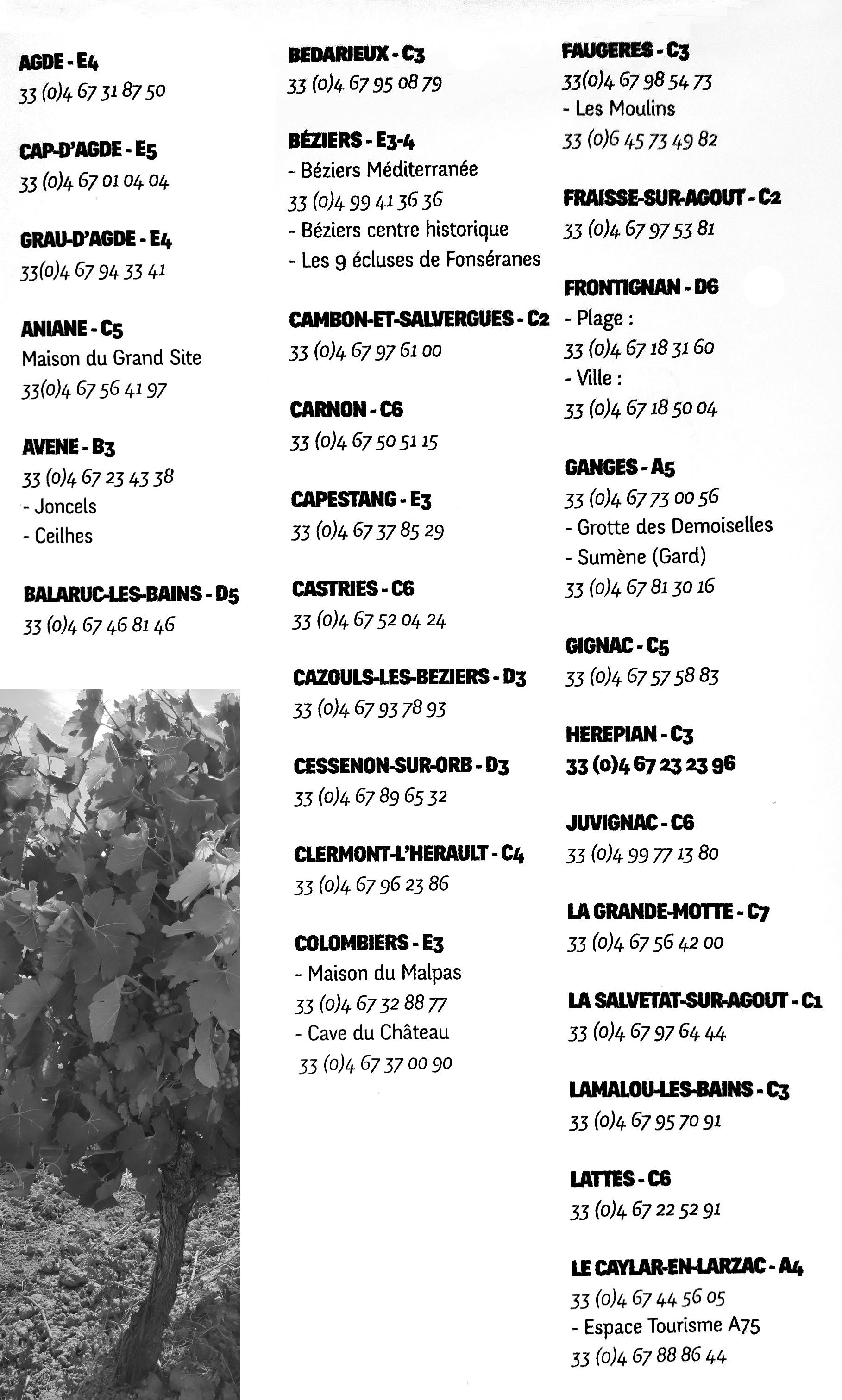 De beste tips voor Languedoc te bezoeken. Alle VVV kantoren van de Languedoc