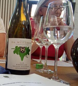 Kamperen tussen de wijngaarden in Duitsland