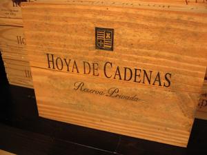 Wijnhuis Vicente Gandía gaat naar Delta Wines